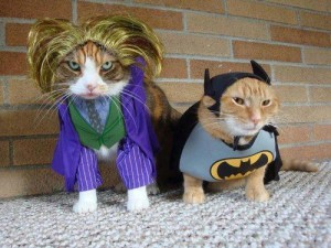 Cats_in_Costumes