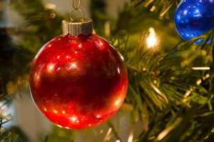 Rana's Music Studio Presents:  Holiday Music from Around the World @ Monroeville Public Library - Gallery Space   Monroeville   Pennsylvania   United States
